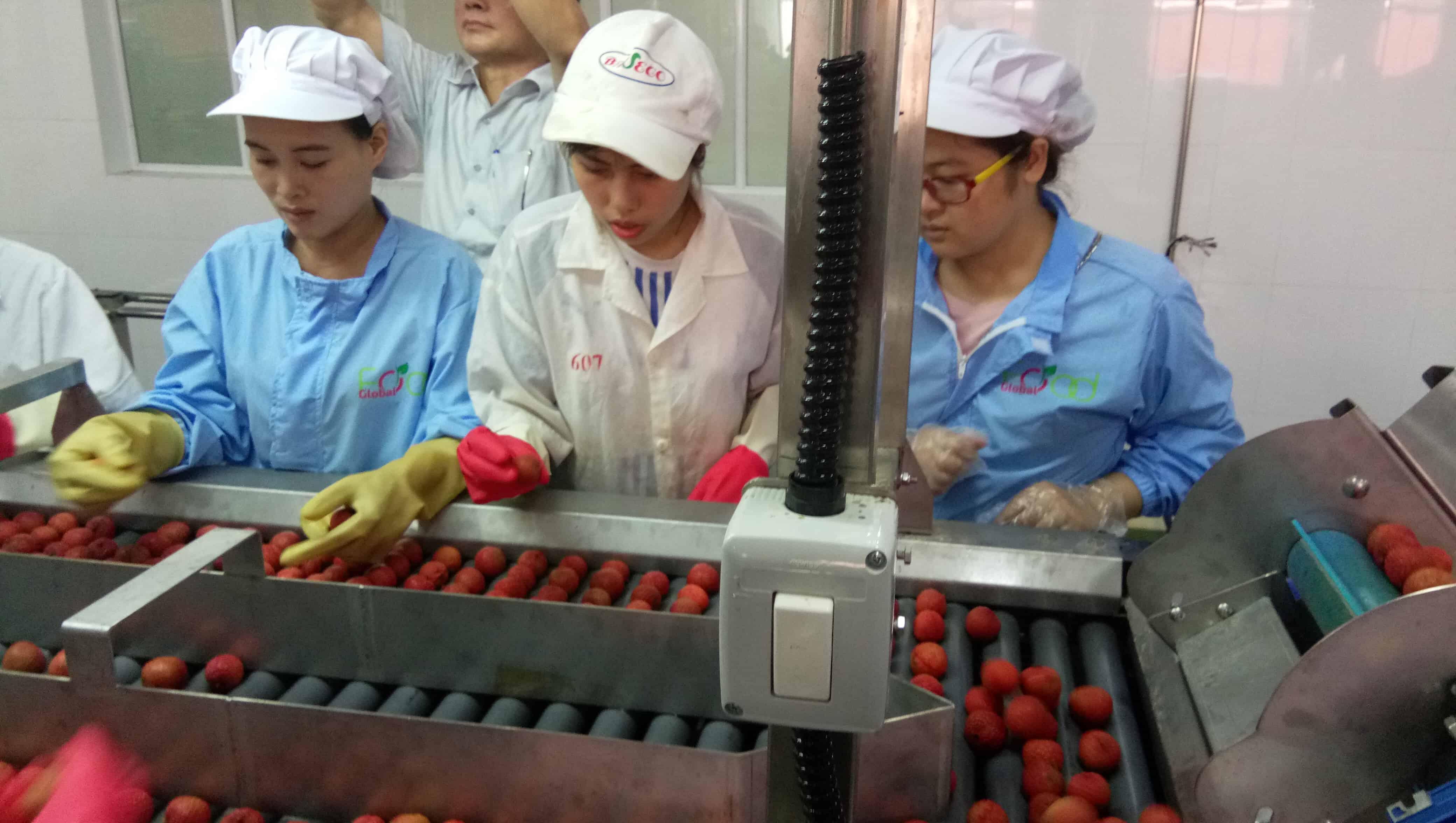 Giá trị cốt lõi Kim Nguyen corporation